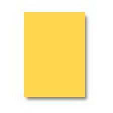 Legal Paper (8 1/2″ x 14″) – Goldenrod – 1 Ream – 854001GO   Globe ...